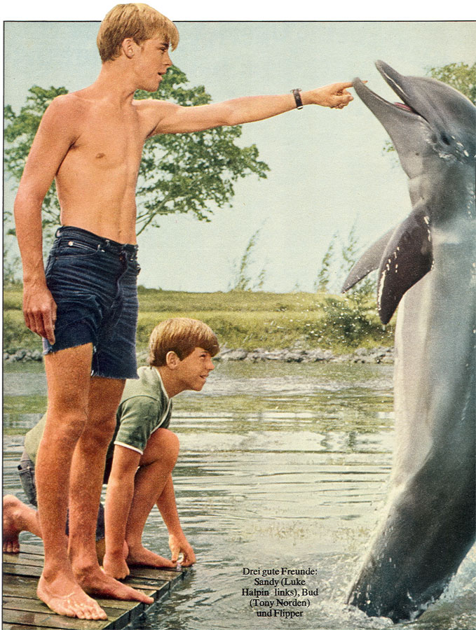 Dolphins and cute shirtless teenager, what more could a young gay boy want?